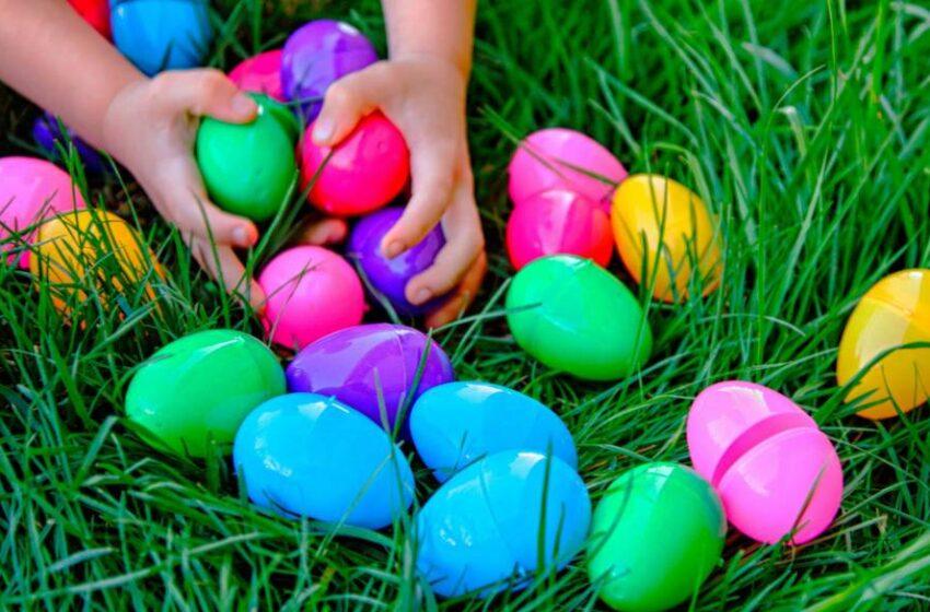 Eieren zoeken!